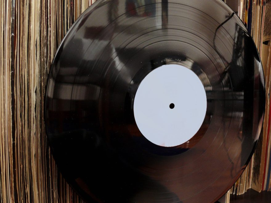 Schallplattenbürste